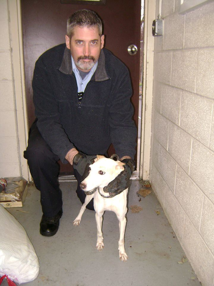 CSO Chipman and a recovered dog at the Vernon Pound